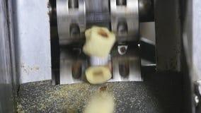Przekąsek i ciastek produkcja przy fabryką zdjęcie wideo