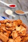 Przekąsza dla przyjęcia, zdrowi układy scaleni z tortilla, nachos z sa Zdjęcia Royalty Free