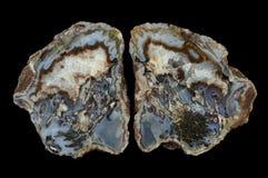 Przekrój poprzeczny mech agata kamień Zdjęcie Royalty Free