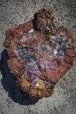 Przekrój Poprzeczny osłupiała bela żlobi z badlands przy fotografia stock