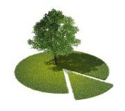 Przekrój poprzeczny ziemia z trawą i drzewem Zdjęcie Royalty Free