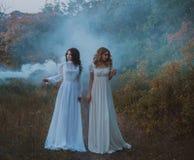 Przelękłe dziewczyny w rocznik sukniach obraz stock