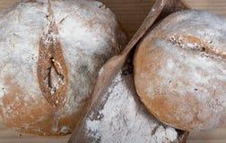 Przeliterowany domowej roboty chleb fotografia royalty free