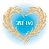 Przeliterowany ucho serce odizolowywający Zdjęcie Stock