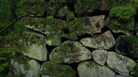 Przelotna Średniowieczna Kamienna ściana W lesie zbiory wideo