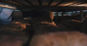 Przemysł spożywczy piekarni piekarniany mężczyzna bierze niektóre świeżego piec chleb z ziarnem od przemysłowej półki w piekarni  zdjęcie wideo
