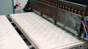 Przemysłowa maszyna robi cukierkom Cukierek fabryka zdjęcie wideo
