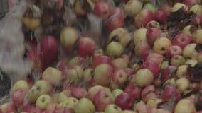 Przemysłowa sok fabryka Świeże owoc przechodzi konwejeru zbiory