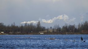 Przemysłowy komin z bielu dymem zbiory wideo