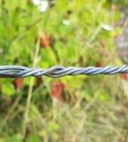 Przemysłowy kręcony drut skupiający się przed roślinami zdjęcia royalty free