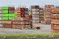 Przemysłowy magazyn twarde drzewo obrazy stock