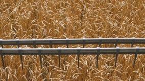 Przemysłowy uprawia ziemię żniwo krajobraz z syndykatem zbiory