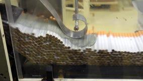 Przemysł tytoniowy produkcja zbiory wideo
