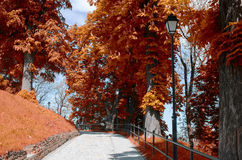Free Przemysl Castle Garden Stock Images - 92753234