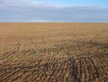 Przeorzący pole z brąz ziemią Obraz Stock