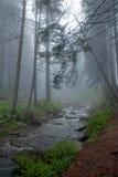 przepływów mgły góry rzeka Zdjęcia Royalty Free