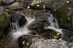 przepływa przez skały creek Fotografia Stock