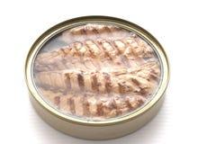Przepasuje makrela w piec na grillu oleju Obraz Royalty Free