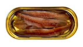 Przepasuje sardele z olejem w żółtej owalnej blaszanej puszce, zakończenie up, odgórny widok, odizolowywający obrazy stock