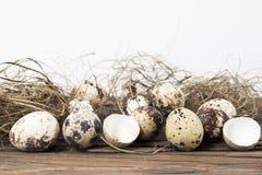 Przepiórek jajek rabatowy tło Obrazy Stock