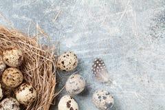 Przepiórek jajka dostępny karciany Easter eps kartoteki powitanie Zdjęcie Royalty Free
