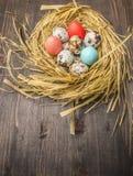 Przepiórek jajka i barwiący dekoracyjni jajka w gniazdują granicę, miejsce dla teksta tła odgórnego widoku drewnianego nieociosan Obraz Royalty Free