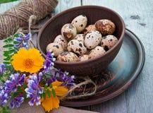 Przepiórek jajka w ceramicznym pucharze Zdjęcia Royalty Free