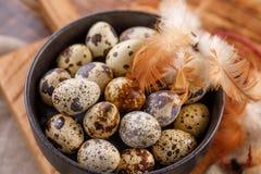 Przepiórek jajka w czarnym filiżanki zakończeniu Mnóstwo przepiórek jajka w filiżance obrazy royalty free