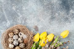 Przepiórek jajka w gniazdeczka i kici wierzbie dostępny karciany Easter eps kartoteki powitanie Zdjęcia Royalty Free