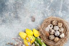 Przepiórek jajka w gniazdeczka i koloru żółtego kwiatach dostępny karciany Easter eps kartoteki powitanie Fotografia Stock
