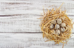 Przepiórek jajka w gniazdeczku na nieociosanym drewnianym tle Odgórny widok Zdjęcia Royalty Free