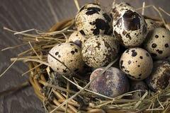 Przepiórek jajka w gniazdeczku na nieociosanym drewnianym tle pojęcia zdrowe jedzenie Obrazy Royalty Free