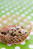 Przepiórek jajka w koszu z zamazanym tłem fotografia stock