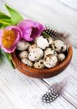 Przepiórek jajka w pucharze zdjęcia stock