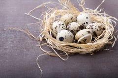 Przepiórek jajka w słomy gniazdeczku Zdjęcia Royalty Free