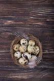 Przepiórek piórka w gniazdeczku na drewnianym tle i jajka Odgórny widok, bezpłatna przestrzeń Zdjęcie Royalty Free