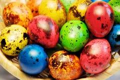 Przepiórek Wielkanocni jajka w koszu Zdjęcie Stock