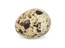 Przepiórka egg fotografia stock