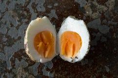 Przepiórki jajko otwarty, centrowany od ptaków ono przygląda się Obrazy Stock