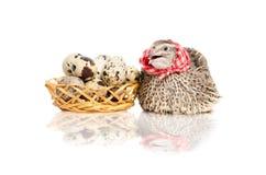 Przepiórki obsiadanie obok kosza przepiórek jajka Zdjęcie Royalty Free