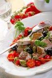 przepisu messinese tuńczyk obraz stock