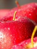 przepyszne czerwone jabłko obrazy royalty free