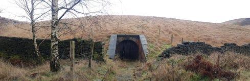 Przerażający Przyglądający tunel W lasach zdjęcia stock