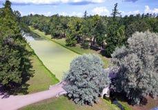 Przerastający z korytkowym duckweed Catherine 24 km imperiału park szlachetności Petersburgu centrum pobyt rodzinny poprzedniego  obraz royalty free