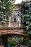 Przerastający zaniechany stary budynek zdjęcie royalty free