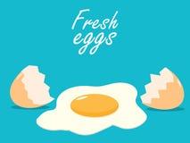 Przerw jajek eggshells pękali świeżego jajecznego mieszkanie Zdjęcie Royalty Free