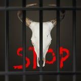 Przerwa krzywdzi zwierzęta Zdjęcie Royalty Free