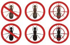 Przerwy mrówki znaki Set insekt zarazy kontrola znaki wektor Zdjęcie Royalty Free