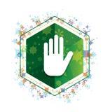 Przerwy ręki ikony rośliien wzoru zieleni sześciokąta kwiecisty guzik ilustracja wektor