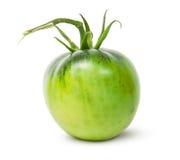 Przerzedże Zielonego pomidoru Obrazy Stock